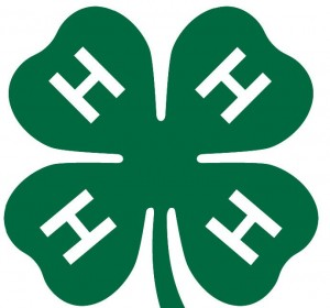 Dubois County 4H Virtual Fair, Great Job 4H! UPDATED with Winners