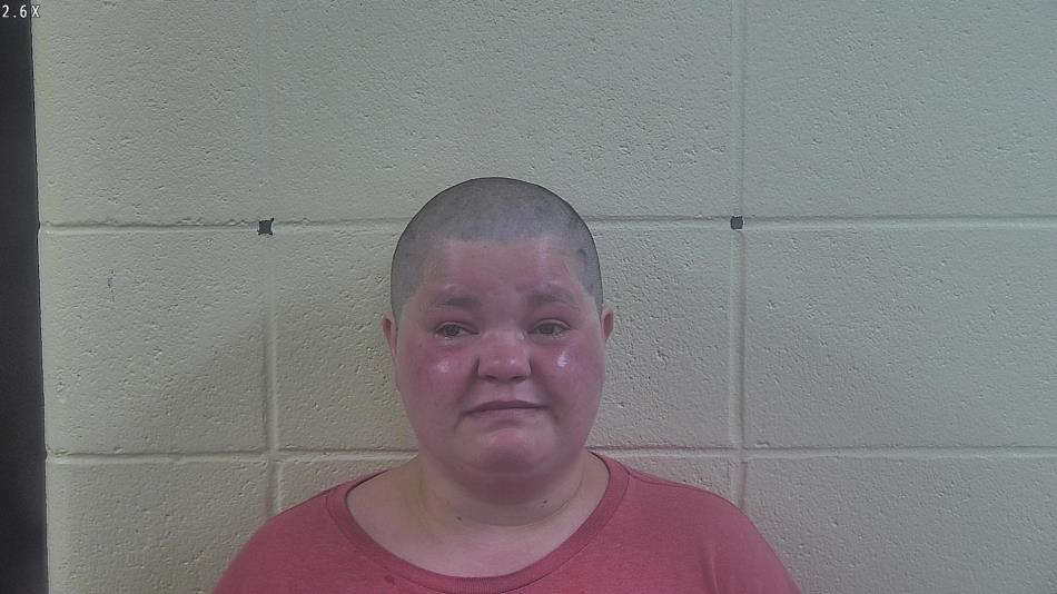 Local Woman Arrested, and is in Jail, on Domestic Battery Charges